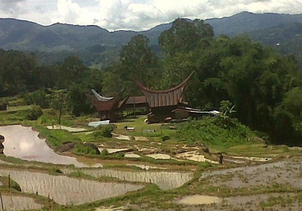 Toraja vilage